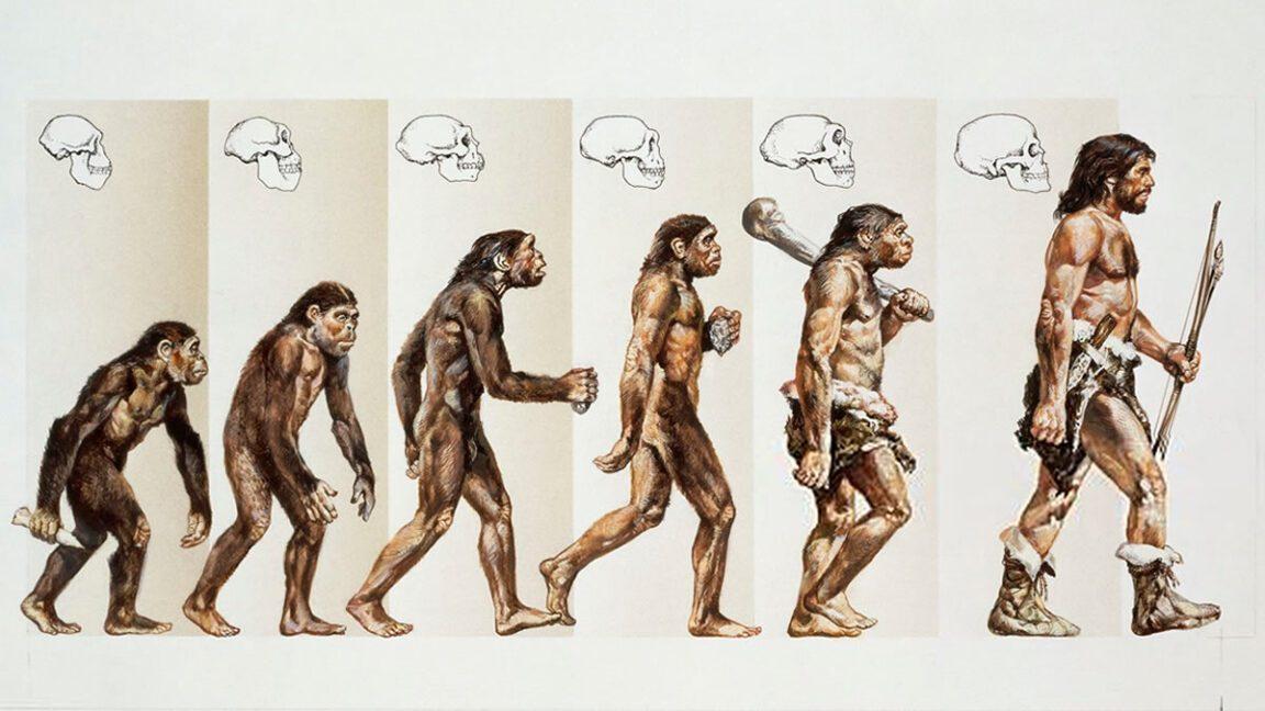 Las leyendas de la evolución